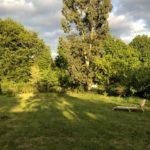 empty meadow