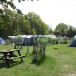 meadow tents