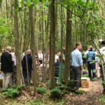 gathering in woods natasha